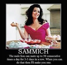 Make Me A Sandwich Meme - make me a sammich memes what s so funny cindysbeentrippin