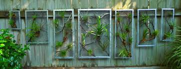 small business saturday plant sale craft organic