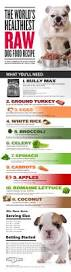 video u0026 infographic how to make your own raw dog food this barf