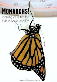 Butterfly Crafts For Kids To Make - 80 best butterfly unit images on pinterest preschool science