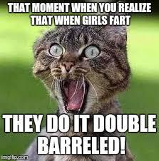 Barrels Meme - hold on harold she s using both barrels imgflip