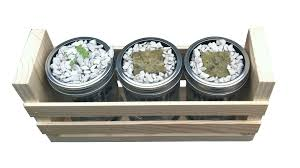 hydroponic herb garden kit