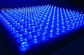blue white grow light led panel hydroponic 110v 225 v ebay
