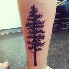 pine tree ideas pictures to pin on tattooskid