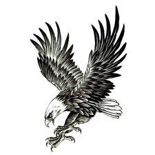5pcs flying eagle fake tattoo arm bird body art hawk tattoos for