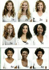 Hair Types by Musely