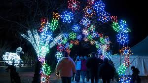 zoo lights houston prices tickets now on sale for detroit zoo s 2016 wild lights holiday