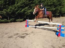 ferrari horse ferrari smart jump u2013 horse jump