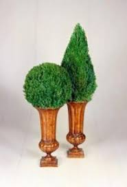 Mantel Topiaries - live preserved topiary preserved live topiaries topiary trees