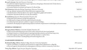 resume font for resume wondrous font size resume standard