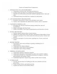 sle professional resume templates 2 officerme sles safety sle philippines