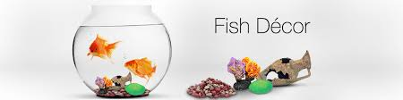 Home Decoration Items Online India Fish Supplies Buy Aquarium Fish Tank U0026amp Accessories Online At