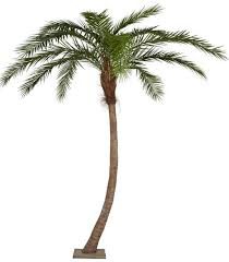p 126520 14 foot palm tree curved synthetic brown