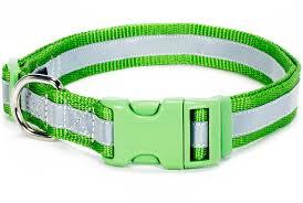 douglas paquette bright green reflective collars leads