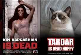 Tardar Sauce Meme - kim kardashian is dead grumpy cat know your meme