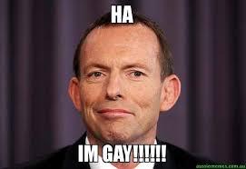 Im Gay Meme - ha im gay tony abbott meme aussie memes