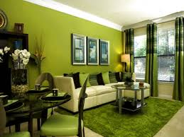 Green Living Room Chairs Photos Hgtv Green Living Space With Dining Area Idolza