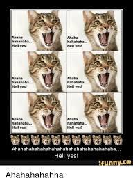 Hell Yes Meme - ahaha hahahaha hell yes ahaha hahahaha hell yes ahaha hahahaha