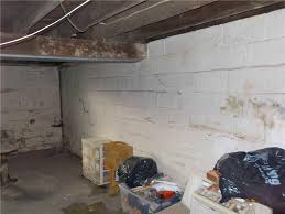 basement wall products in lansing grand rapids kalamazoo