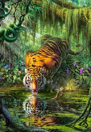 puzzle tiger in the jungle castorland 103935 1000 pieces jigsaw