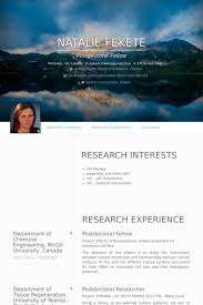 Example Of Objective On Resume by Postdoctoral Fellow Resume Samples Visualcv Resume Samples Database