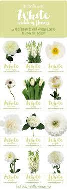 wedding flowers types best of white wedding flowers types floral wedding inspiration