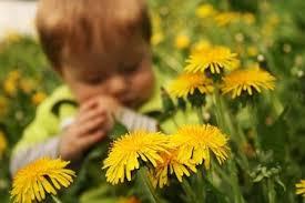 17 gardening games for kids