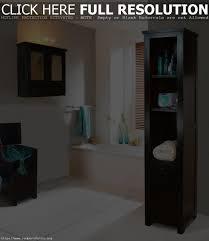 Bathroom Ideas For Small Bathrooms Designs Small Narrow Bathroom Design Ideas Bathrooms Cabinets Bathroom