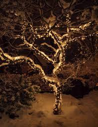 how to wrap christmas lights around a tree diy christmas tree trunk christmass for wrapping trunkoutdoorsled