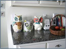 owl canisters for the kitchen owl canister set jpg s pi kitchen designs of 3 canisters foter for