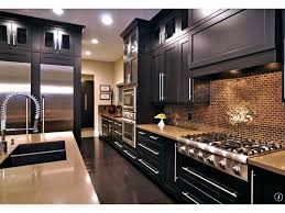 interior beautiful modern fresh kitchen design decorated with