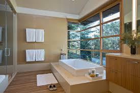 cave bathroom ideas shower cave bathroom contemporary with vaulted ceilings