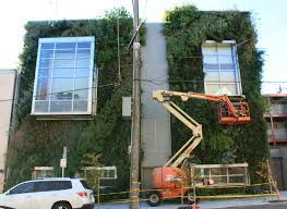 Wall Gardens Sydney by Vertical Garden Maintenance Zandalus Net