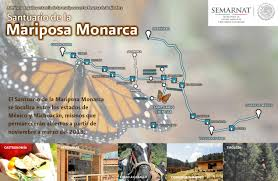 Monarch Migration Map Monarch Butterfly Migration In Heavy Decline The Tequila Files