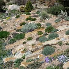 Urban Garden Denver - 113 best denver botanical gardens images on pinterest botanical