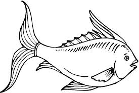 fish coloring pages color book