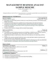 resume setup exles program analyst resume setup exles template shalomhouse us