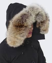 chilliwack bomber c 1 6 s canada goose chilliwack bomber jacket jules b