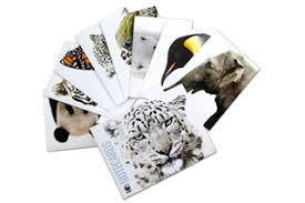 species note cards apparel and more from world wildlife fund