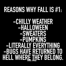Fall Memes - 3413 best memes images on pinterest funny memes memes humor and