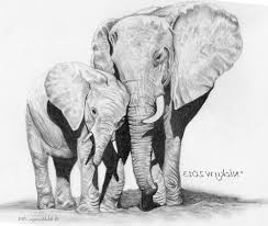 pencil art of animals love mother drawing of sketch