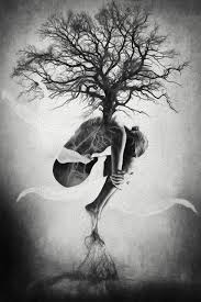 tree of erik brede photography