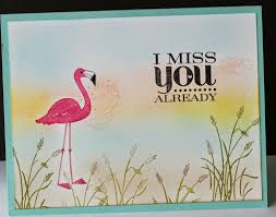 100 best cards flamingo lingo images on pink