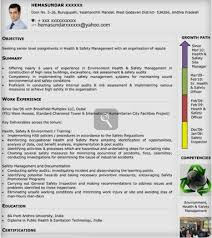 Visual Resume Samples by Coaching Resume 16176
