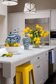 blue kitchen cabinets and yellow walls beautiful colours that go well with yellow in any scenario