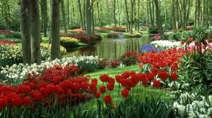 pictures of beautiful gardens with flowers flower garden beautiful flower garden wallpapers in 1366x768