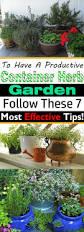 7 essential container herb garden tips growing herbs in pots