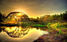 download wallpaper 3840x2400 sunset pond trees landscape ultra