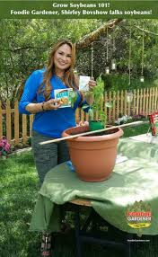 467 best home family show on hallmark channel 10a 9c always
