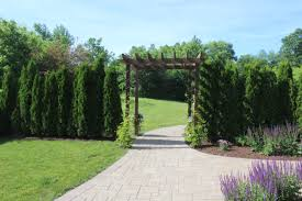 the big backyard reveal so many updates 12 oaks